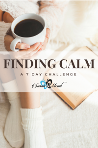 Busy mom, single or grandmom, are you ready to find calm? Join me for a 7 day challenge into finding calm in the chaos. It's my free gift to you.