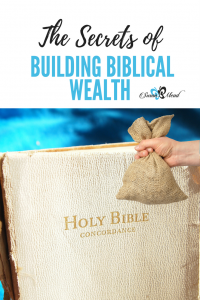 When we apply God's word in our daily lives, we live more abundantly, both a universal and Christian principle. Join us to discover Biblical wealth secrets.
