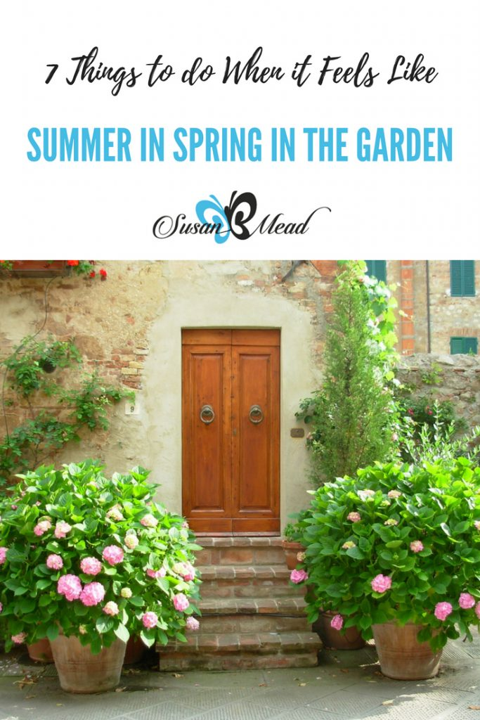 It feels like Summer in Spring in the garden at my house. Officially, it is still springtime, yet it feels like summer has arrived in full force with these 90+ degree days. So how do we help our plants handle the unseasonable heat? Get these 7 tips on things to do to help your plants thrive in the heat.