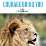 What Could Courage Bring You?